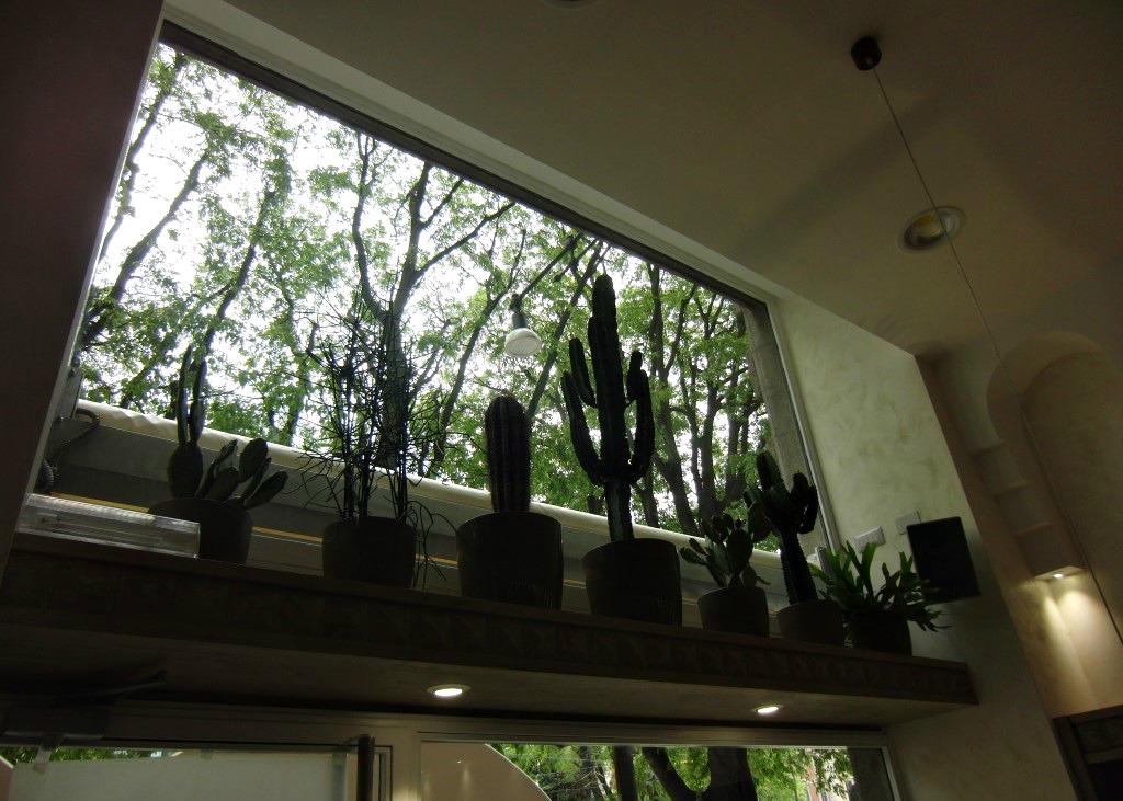 Foto del giardino pensile situato presso il Wine Bar Cocktails, Cafè Olimpia a Milano